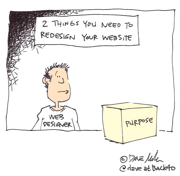 2 things to redesign website cartoon