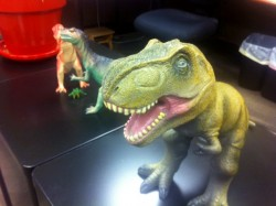 Amy and Matt's Desk, full of dinosaurs and giant plants