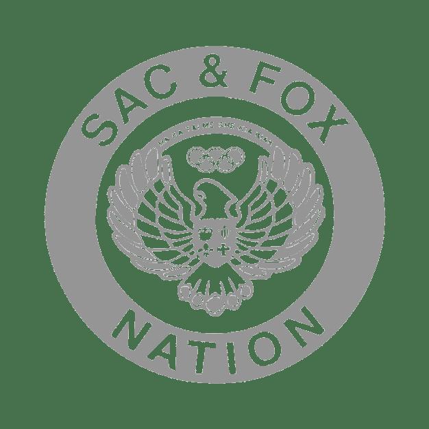 SFN Original Logo 1-01